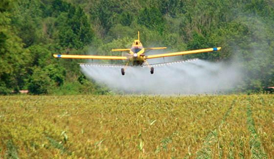 Stop Agent Orange and Monsanto